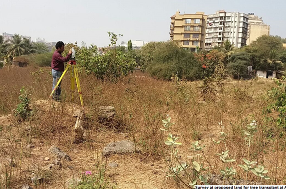 Survey at prposed land for tree