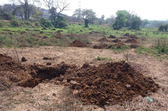 Area preparation for plantation of new trees at Aarey Colony