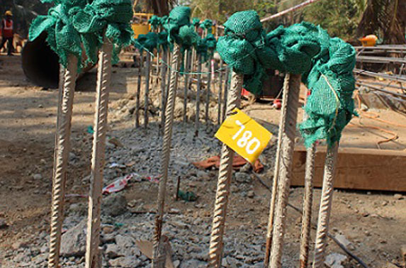 Completed piles at Cuffe Parade Station