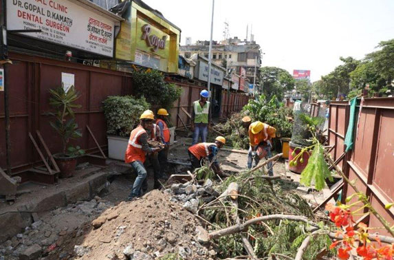 Dadar tree cutting