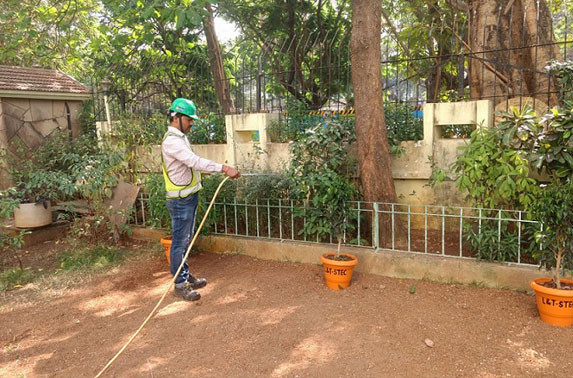 Distribution and watering of plants at societies in vicinity of Work Areas